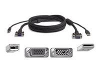 Belkin OmniView All-In-One Pro Series Plus - Video / USB cable - HD-15, 4 PIN USB Type B (M) - 4 PIN